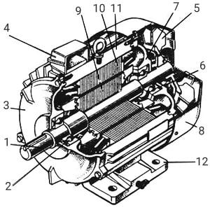 устройство асинхронного электродвигателя марки АИР